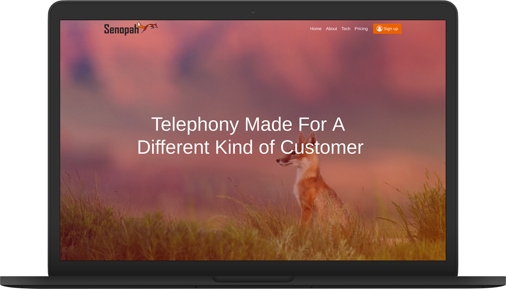 senopah website mackbook preview